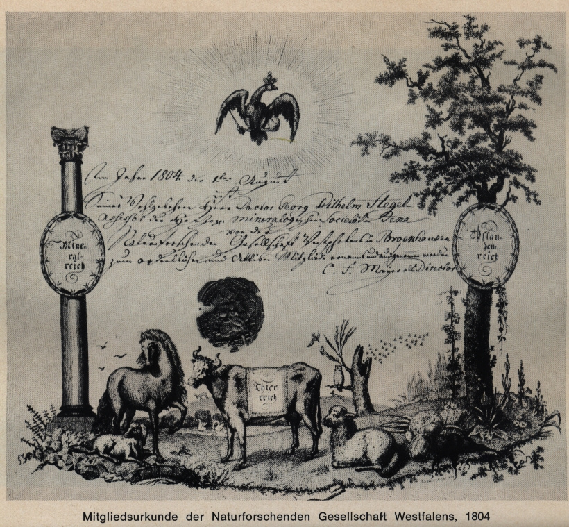 "Membership certificate of the 'Naturforschende Gesellschaft Westphalens' (reproduced from ""Hegel: Leben-Werk-Wirkung"", Stuttgart 1970, p.128, currently out of print)"